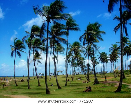 Relaxing in a tropical place - stock photo