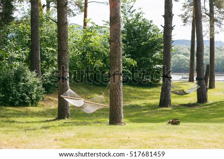 Relaxing Lazy Time With Hammock In The Green Forest. Beautiful Landscape  Swinging In The Summer