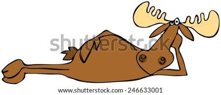 Relaxing moose - stock photo