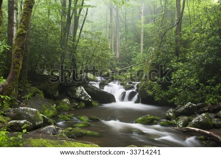 Relaxing scenic along the Roaring Fork Moter Tour in the Great Smoky Mountains National Park