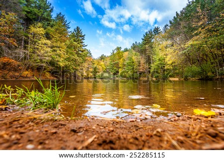 Relaxing Shore Of Small Pond In Fall  - stock photo