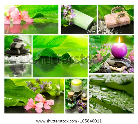 relaxing spa collage - stock photo