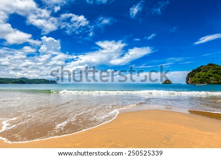 Relaxing tropical Caribbean golden sand island beach with palm trees. Playa Medina, Venezuela - stock photo