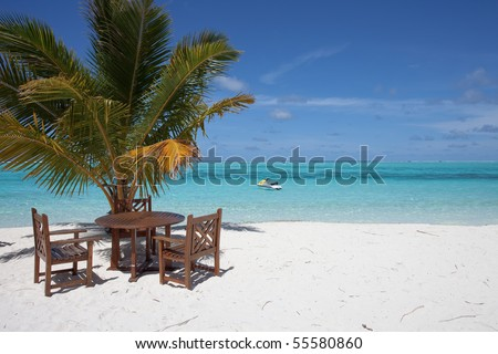 Relaxing under palms while looking upon the turquoise sea