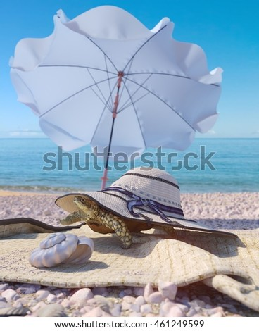 relaxing vacation concept background with seashell,umbrella, turtle and beach accessories