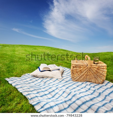 Relaxing with a picnic and a good book in a quiet meadow - stock photo