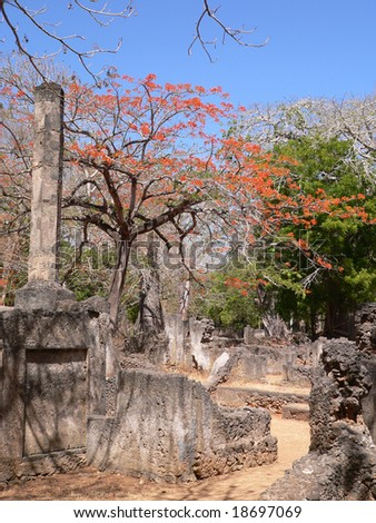 Remains of medieval city of Gede, Kenya - stock photo