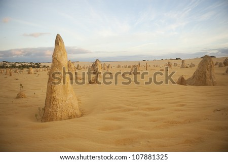Remarkable desert landscape of The Pinnacles or Nambung National Park in Western Australia just before sunrise, with cloudscape and copy space.