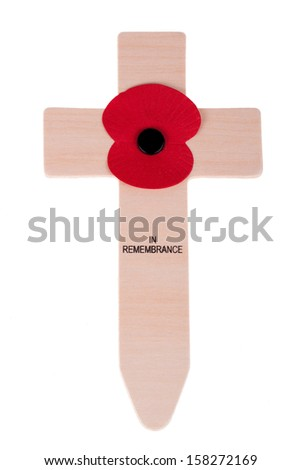 Remembrance Day poppy isolated on white background. - stock photo