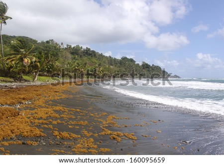 Remote black sand beach, Dominica, Caribbean Islands - stock photo