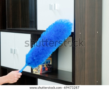 Remove Dust From Your Furniture By Duster Feather