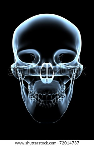 rendered bluish x-ray image of a human skull -front view - stock photo