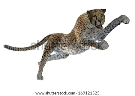 Rendered cheetah illustration isolated on white