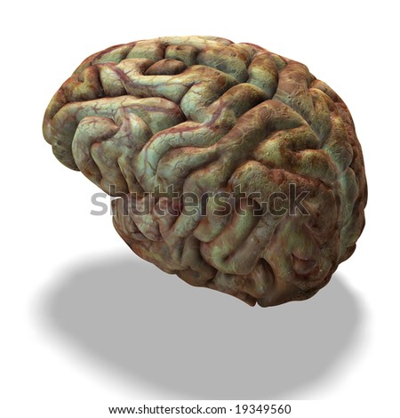 rendering of a human brain which look used with clipping path