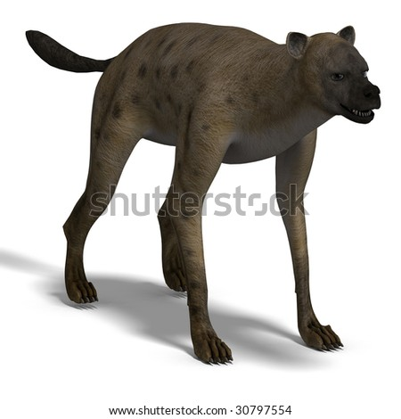 rendering of a hyena with clipping path and shadow oder white