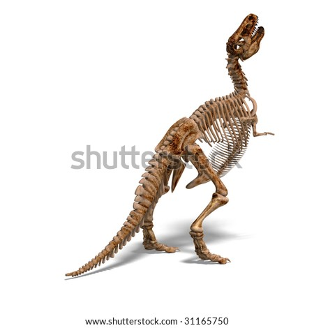 rendering of a t-rex skeleton with Clipping Path and shadow over white