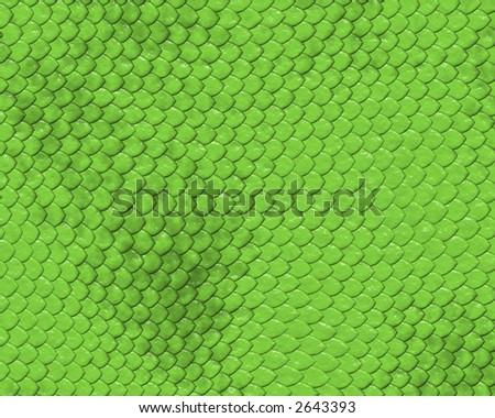 reptile skin background of green snake - stock photo
