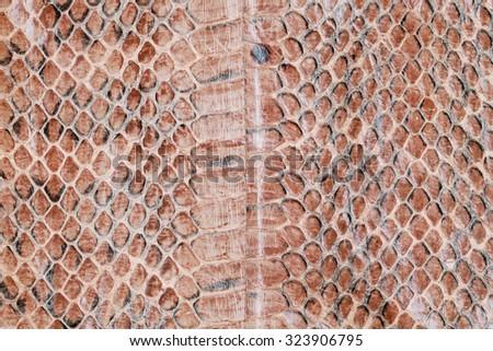 Reptile skin,snake skin background,Snake skin pattern background. - stock photo