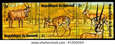 "REPUBLIC OF BURUNDI -  CIRCA 1976: a postage stamp shows image of the animals of savanna, ""taurotragus oryx, madoqua saltana, gazella thomsony"", circa 1976"