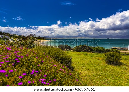 Garden By The Bay Meadow mossel bay stock images, royalty-free images & vectors | shutterstock