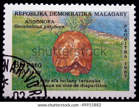"""a description of madagascar formally called the malagasy republic D malagasy political institutions and the """"untamed presidency""""    madagascar is a democratic republic: each of its three republics have  the  sections above have provided a description of the way formal authority has been   called """"big families,"""" parts of civil society (particularly churches), and the."""