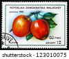 REPUBLICA MALAGASY - CIRCA 1992: A stamp printed in the Malagasy (Madagascar) shows Apples, Malus Domestica, Fruit of the Apple Tree, circa 1992 - stock photo