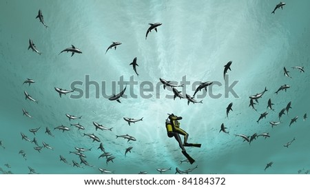 requins - stock photo