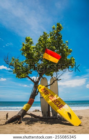 Rescue boards stay under the tree on sand beach with blue sea and blue sky on background vertical  - stock photo