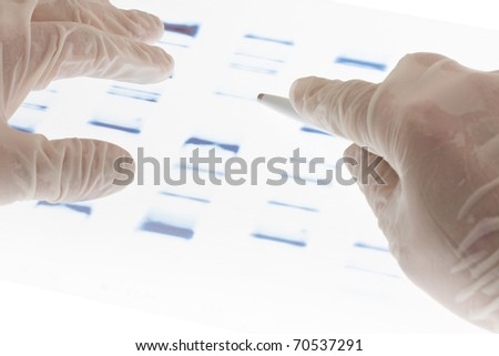 Researcher examining DNA sequence transparency slide - stock photo