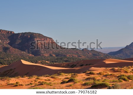 Reserve Coral Pink sand dunes in the U.S.. Elegant orange-pink dune spectacularly illuminated by the sunrise against the backdrop of jagged mountains. - stock photo