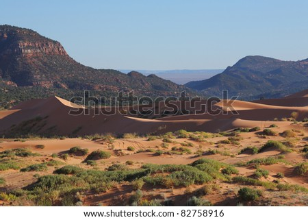 Reserve Coral Pink sand dunes in the U.S.. Gracefully curved orange-pink sand dune covered the rising sun - stock photo