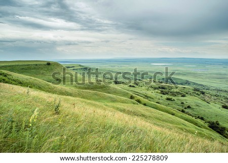 Reserve Strizhament. Flowers in the mountains. Russia, Stavropol.