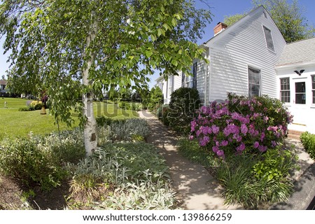 Residential home (Cape Cod) with Birch tree and rhododendron bush on corner