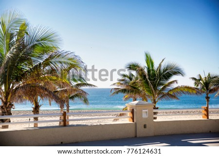 Resort Ocean Beach View with Palm Trees on Sunny Blue Sky Day