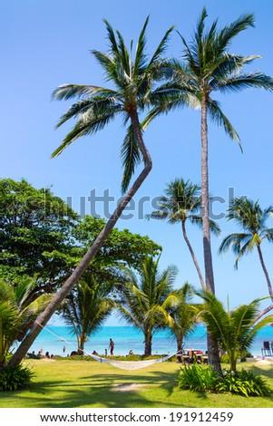 Resort panorama in Samui Island, Thailand - stock photo