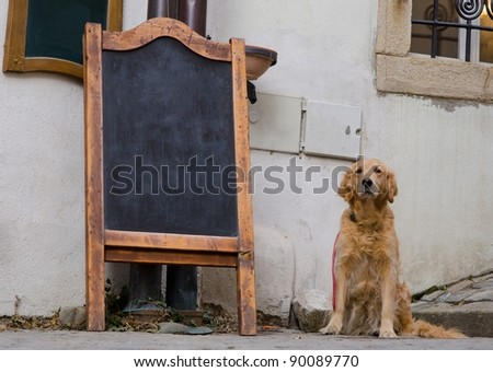Restaurant menu board on the street with a dog sitting near by - stock photo