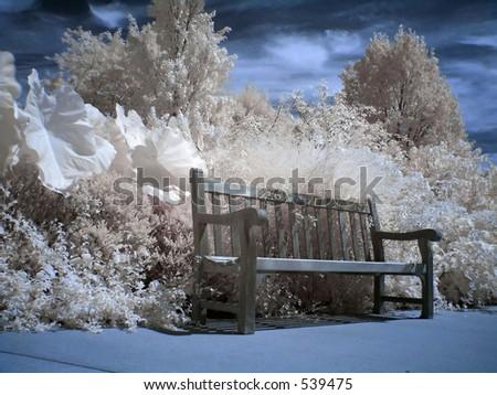 Resting Spot - stock photo