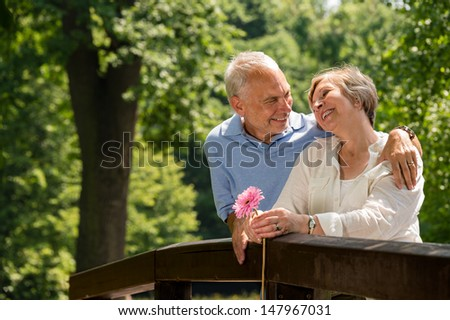 Retired romantic couple hugging and smiling in park - stock photo