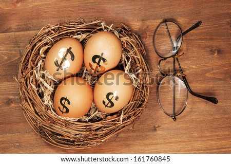Retirement Nest Egg  - stock photo