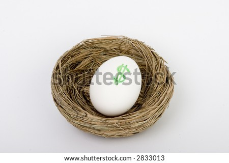 retirement nest egg dollars - stock photo