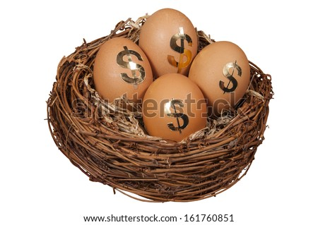 Retirement Nest Egg isolated on white background - stock photo