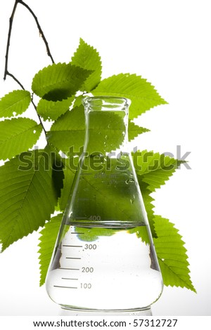 Retort and leaf on the white background - stock photo