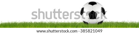 retro black white leather soccer ball on grass isolated on white background - stock photo