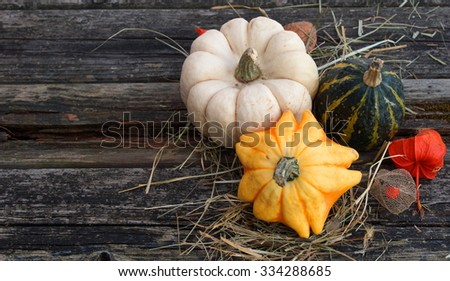 retro look filter from a autumn stillife on a background of old wood with room for copy space  - stock photo