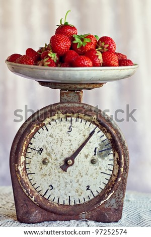 retro scales with a handful of fresh ripe strawberries - stock photo