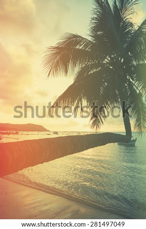 Retro stylized palm tree on tropical beach at sunset - stock photo