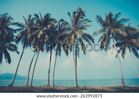 Retro stylized palm trees on summer tropical shore - stock photo