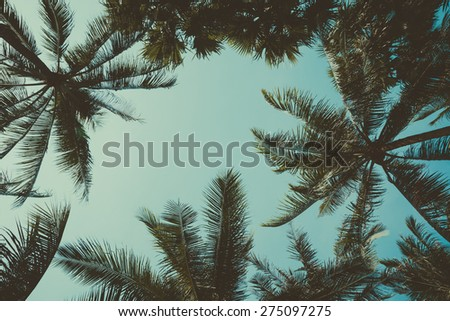 Retro stylized palm trees over sky background - stock photo