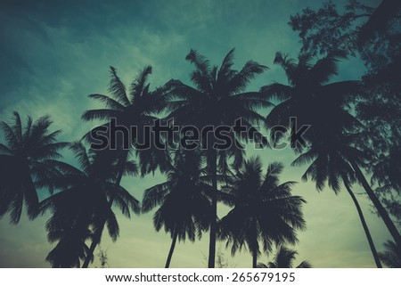 Retro stylized palm tress over dark sky - stock photo