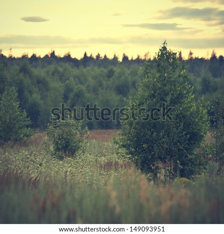 retro vintage nature background - stock photo